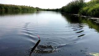 Рыбалка в елани первоуральск