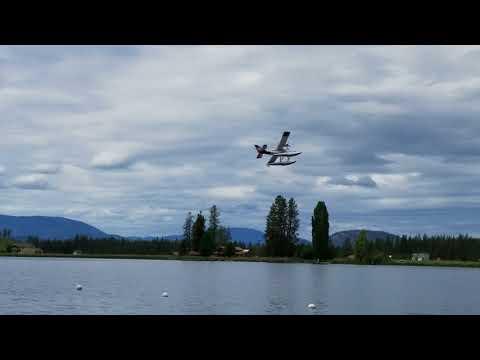 avios-bushmule-float-flying