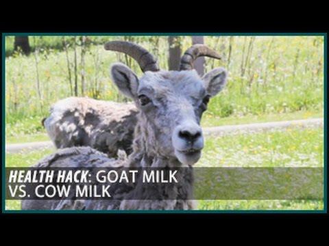 mp4 Nutrition Goat Milk, download Nutrition Goat Milk video klip Nutrition Goat Milk