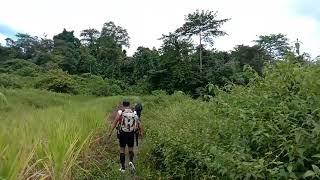 Kalimantan jejak pertualangan bertemu suku asli dayak punan  batu kaltim