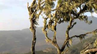 Simien Mountains - Ethiopia 2010