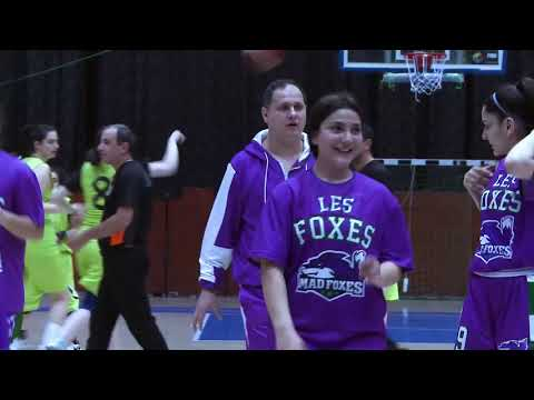 yerevan basket vs les foxes