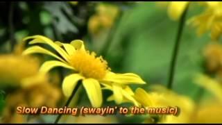 Slow Dancing - Johnny Rivers
