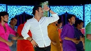 Rabhasa Movie Dam Damare Video Song - Jr.Ntr, Samantha, Pranitha