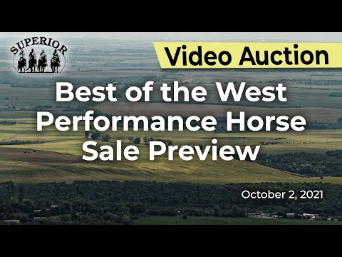 Best of the West Performance Horse Sale Preview
