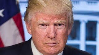 Золотые яйца Дональда Трампа