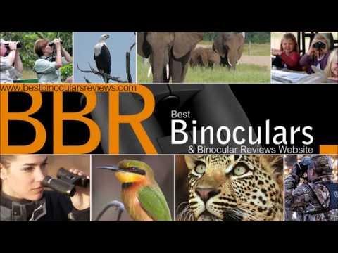 Best Binoculars Under $200/£200