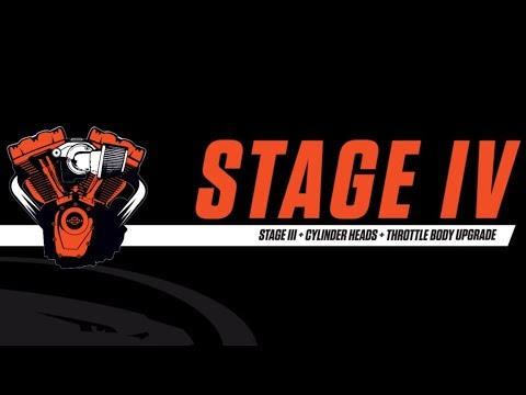 2019 Harley-Davidson FXDR™ 114 in Sunbury, Ohio