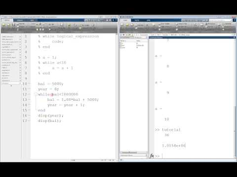 MATLAB While Loop Tutorial