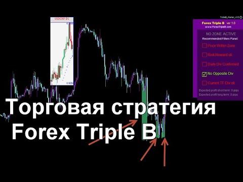 Как выбрать брокера для покупки акций