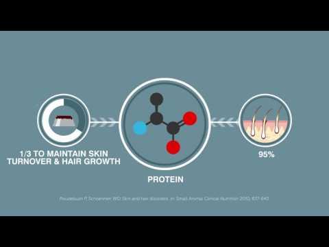 Mérgező parazita gyógyszerek gyártója