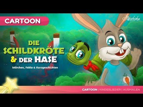Die Schildkröte und der Hase märchen | Gutenachtgeschichte für kinder
