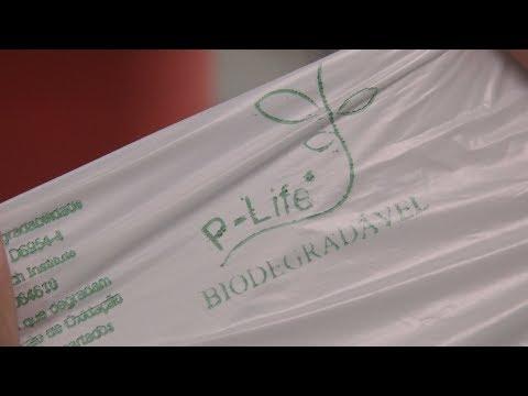 Estado do Rio aprova fim das sacolas plásticas em lojas e supermercados