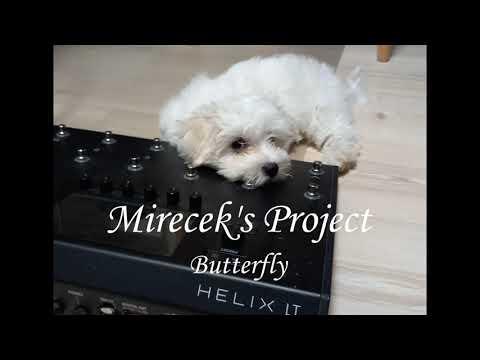 Mireček's Project - Mirecek's Project-Butterfly /guitar instrumental song/