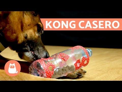 Cómo hacer un KONG casero - Juguetes para perros
