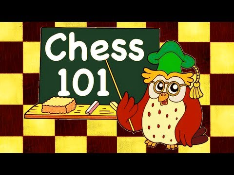 Not my video. However if you are brand new to chess, I strongly suggest watching it before taking lessons.