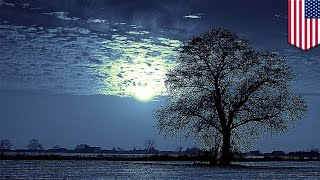 Winter solstice: The shortest day of the year (up north) is almost here - TomoNews