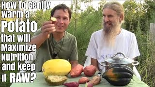 How to Gently Warm a Potato that will Maximize Nutrition and Keep it Raw ?