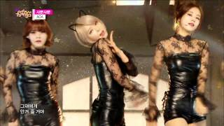 [HOT] AOA - Like a Cat, 에이오에이 - 사뿐사뿐, Show Music core 20141206