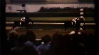 Desert Vixen - 1974 Matchmaker Stakes