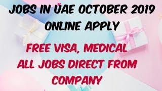 Jobs In Uae October 2019 Online Apply | Dubai Jobs For Freshers 2019 | Uae Jobs For Indians 2019
