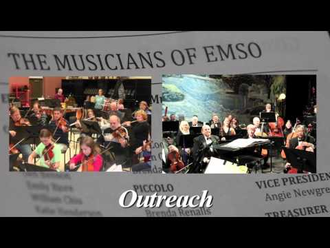 EMSO, in under 60 seconds...