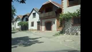 preview picture of video 'Cesta kolem sklípků - Velké Bilovice'