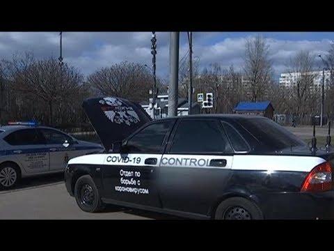В Москве задержали водителя из за надписи на машине «Отдел по борьбе с короновирусом»