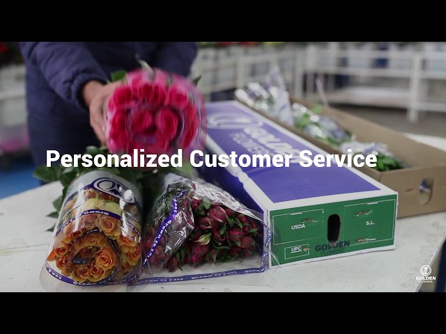 Personalized Customer Service