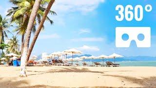 VR Videos 360 Palm Trees Beach Vietnam Relaxing SBS 3D 360°