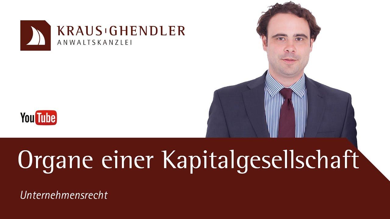 Die Organe einer UG oder GmbH