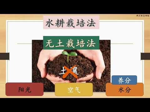 , title : '水耕栽培法
