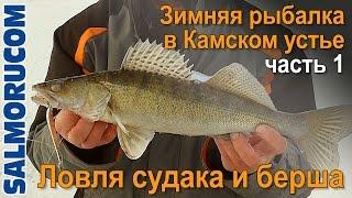 Смотреть онлайн Зимняя рыбалка на судака, о снастях для ловли
