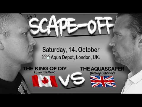 The aquarium scape-off - King of DIY