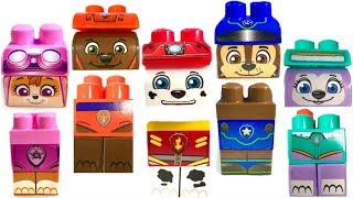 Best Learning Colors for Children Paw Patrol Wrong Heads Ionix Blocks Zuma Everest   Fizzy Fun Toys
