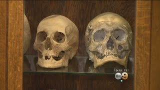 The Museum Of Death Is Filled With Lively Exhibits -- If You Don't Faint