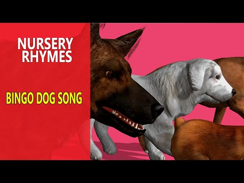 Bingo Dog Song Cartoon Nursery Rhymes for Kids