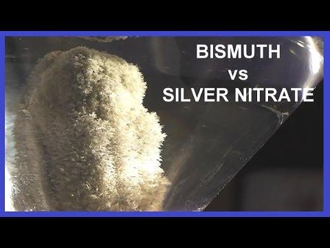 Growing SILVER Crystals on Bismuth Metal