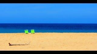 On the Beach In Hawaii - Ziggy Marley