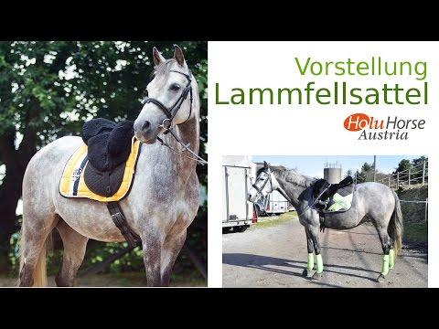 Lammfellsattel Holu Horse | Vorstellung | Dodos Welt