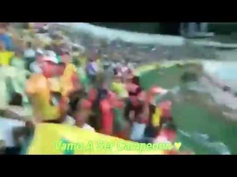 """""""Señores yo soy del real de cartagena"""" Barra: Rebelión Auriverde Norte • Club: Real Cartagena"""