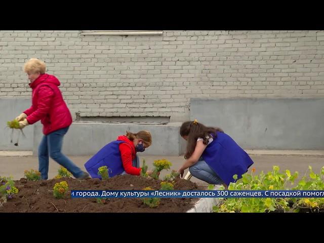 ДК Лесник украсили три сотни цветов