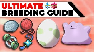 ULTIMATE Breeding Guide: Perfect IVs, EVs, Natures, Hidden Abilities | Pokémon Sword & Shield