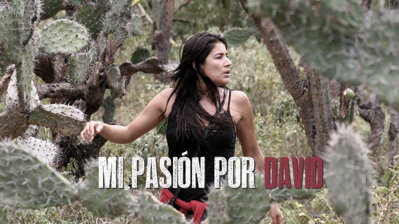 MI PASIÓN POR DAVID
