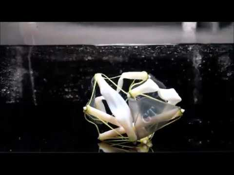 3-D Printed Objects Dramatically Grow with Heat