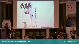 Toppmøte 2014 – Pernille Ness