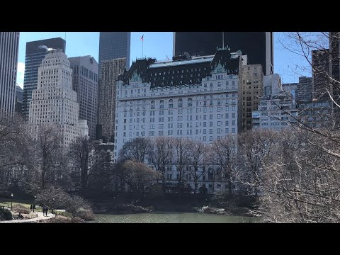 The Plaza Hotel New York City review: featuring the Fitzgerald Suite