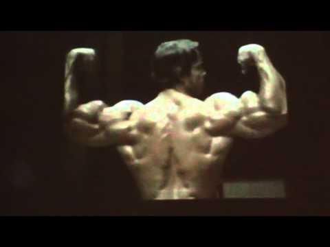 Les normes au bodybuilding sur kms à