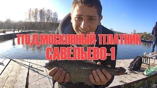 Платная рыбалка в савельево солнечногорского района