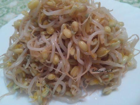 Корейский салат из маша